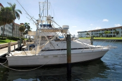 29-luhrs-tournament-mini-tower-sport-fish boat image