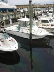 24' Baha Cruiser for sale