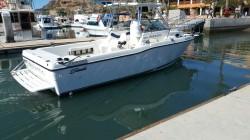2000-striper-seaswirl-2601-io boat image