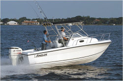2014 - Angler Boats - 220WA