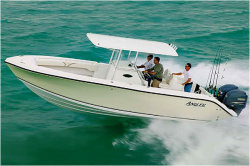 2013 - Angler Boats - 2800 center