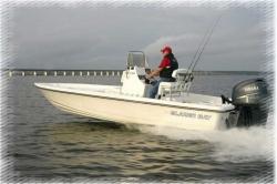 2012 - Blazer Boats - 2420 Professional
