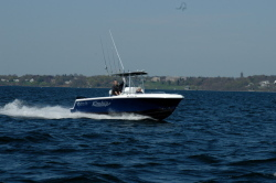 2009 - Blue Fin Boats - Pro Fish 250 CC