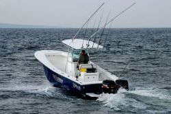 2010 - Blue Fin Boats - Islander 270 CC