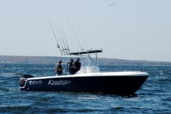 2012 - Blue Fin Boats - Pro Fish 250 CC