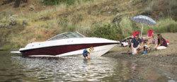 2010 - Campion Boats - Allante 595i SC