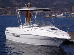 2018 - Campion Boats - 632 BRA SC