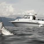 2020 - Campion Boats - EX26 SC BRA