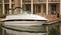Campion Boats 825i MC Allante Cruiser Boat