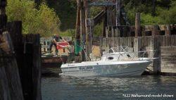 Campion Boats 622 WA Walkaround Boat