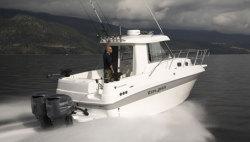 Campion Boats - 822 SD BRA