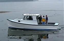 2019 - Cape Codder - 28 T Jason