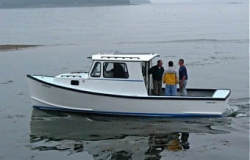 2020 - Cape Codder - 28 T Jason