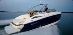 Cobalt Boats - 303