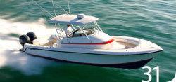 Contender Boats 31 Fish Around Walkaround Boat