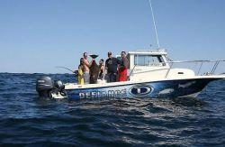 2020 - Defiance Boats - Admiral 220 EX