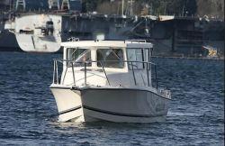 2020 - Defiance Boats - San Juan 250