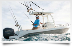 2012 - Everglades Boats - 210CC