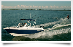 2012 - Everglades Boats - 230DC