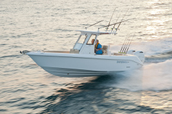 2014 - Everglades Boats - 255CC