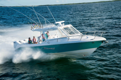 2018 - Everglades Boats - 350LX