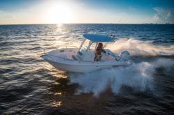 2020 - Everglades Boats - 235 CC