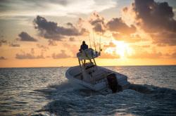 2020 - Everglades Boats - 243cc
