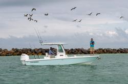 2020 - Everglades Boats - 253 CC