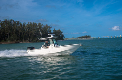 2020 - Everglades Boats - 273 CC