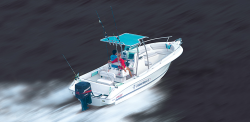 2018 - Fibrafort - Fisherman 245