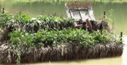 2017 - Gator Trax Boats - Gators Nest