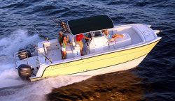 Glacier Bay Boats 3065 Canyon Runner Power Catamaran Boat