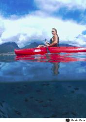 2011 - Hobie Cat Boats - Maui