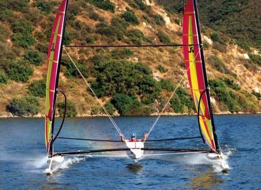 l_Hobie_Cat_Boats_-_Trifoiler_2007_AI-255518_II-11564074