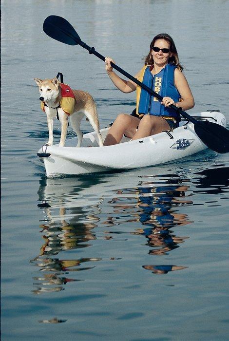 l_Hobie_Cat_Boats_Maui_2007_AI-255637_II-11566777