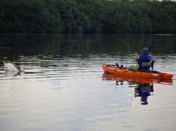 2014 - Jackson Kayak - Cuda 14