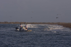 2014 - Majek Boats - Texas Skiff