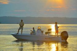 2020 - Nauticstar Boats - 227 Bay
