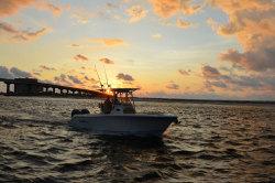 2020 - Nauticstar Boats - 25 XS