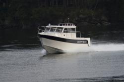 2017 - Osprey Boats - 30 Long Cabin