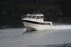 2019 - Osprey Boats - 30 Long Cabin
