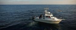 2020 - Parker Boats - 2520 XLD Sport Cabin