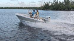 2020 - Pioneer Boats - Bay Sport 175