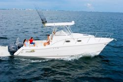 Pro Sport Boats 2660 ProKat Walk Around Cruiser Boat