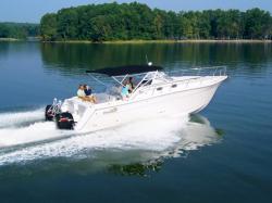 Pro Sport Boats 3660 ProKat Express Express Fisherman Boat