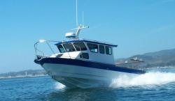2014 - Radon Boats - Signature 29