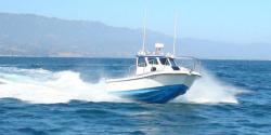 2014 - Radon Boats - Signature 22