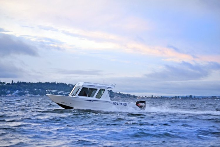 l_seahawkpilothouseboatforsale-oregon2