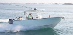 2020 - Sea Born - SX281