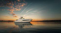 2015 - Sea Ray Boats - 310 Sundancer